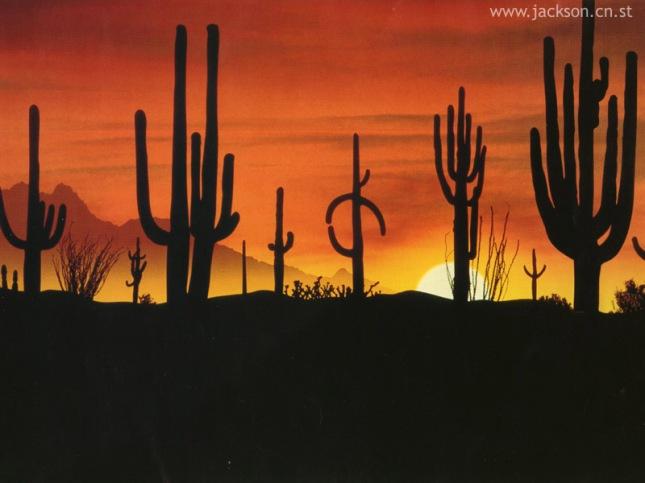 cactus no deserto
