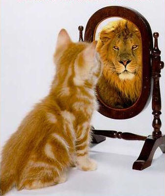 a imagem que temos de nós mesmos