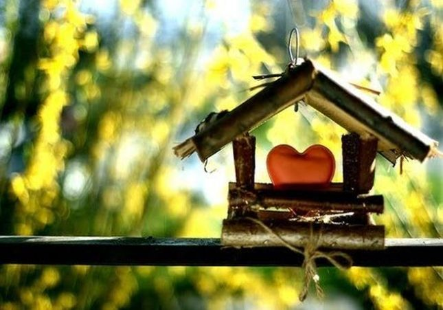 casa-coracao